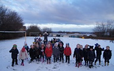 Ladybirds and Dragonflies have fun in the snow