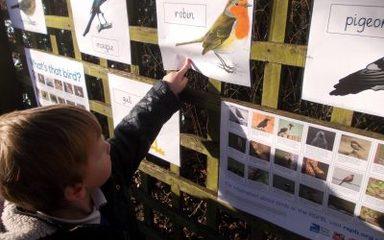 Reception Birdwatching