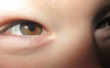 The classroom through our eyes