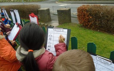 Robins take part in a traffic survey!