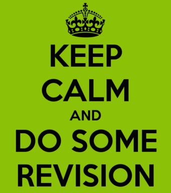Revision Rally starts