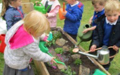 Gardening in Nursery.