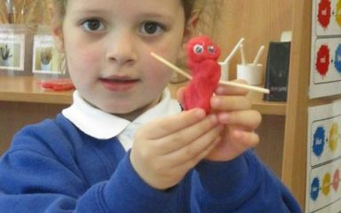 Ladybirds have made ladybirds and more.