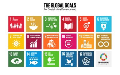 The Global Goals at Windy Nook Primary School