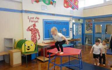 We are amazing gymnasts in the Dragonflies