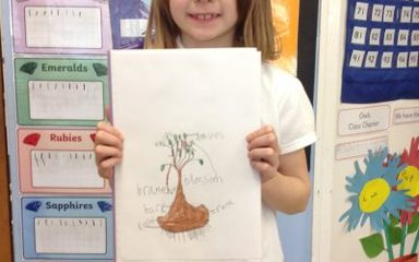 Owls look at the different parts of a plant and tree