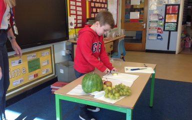 Tasting our designed fruit salad