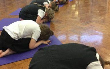 Yoga Bugs!