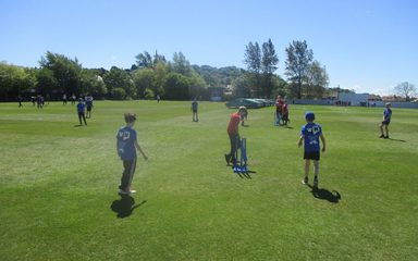 Year 5 Cricket